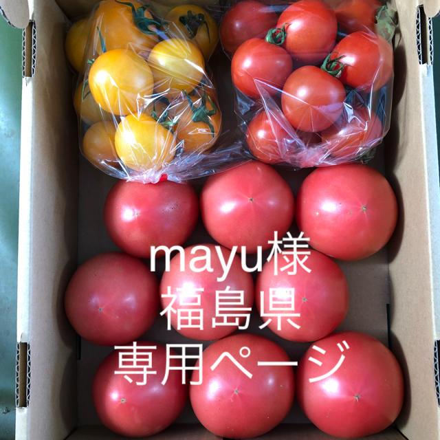 mayu様専用ページ 食品/飲料/酒の食品(野菜)の商品写真