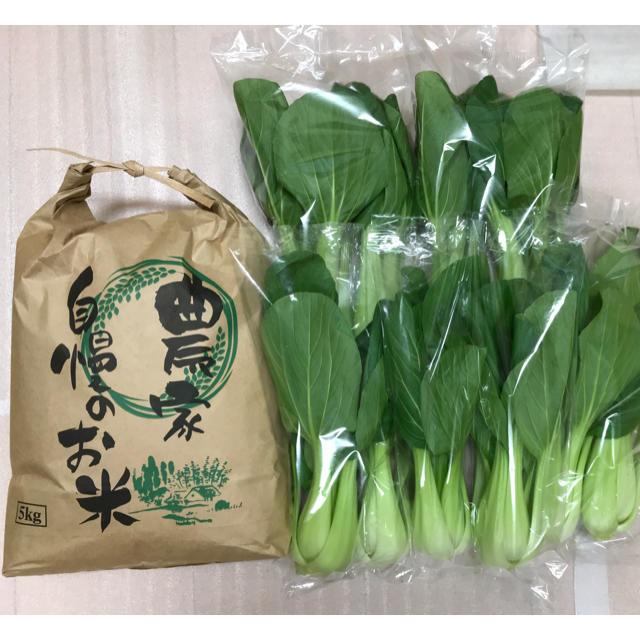 特別価格!新米5キロ&チンゲン菜1キロ以上 食品/飲料/酒の食品(野菜)の商品写真