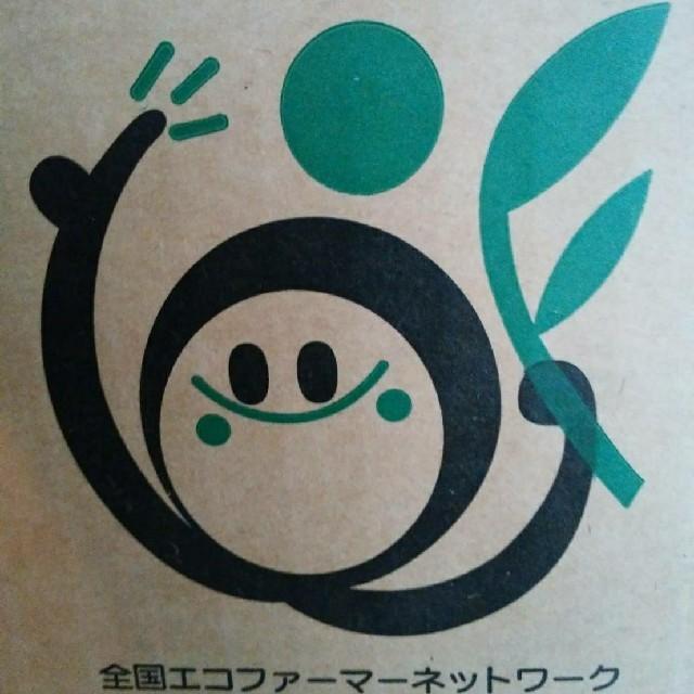 北海道産 減農薬 玉ねぎ L大サイズ 食品/飲料/酒の食品(野菜)の商品写真