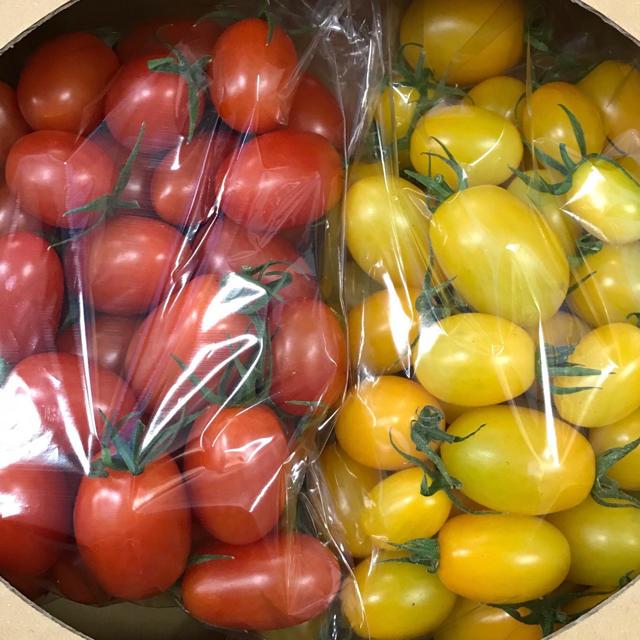 ミニトマトアイコセット1キロ 食品/飲料/酒の食品(野菜)の商品写真