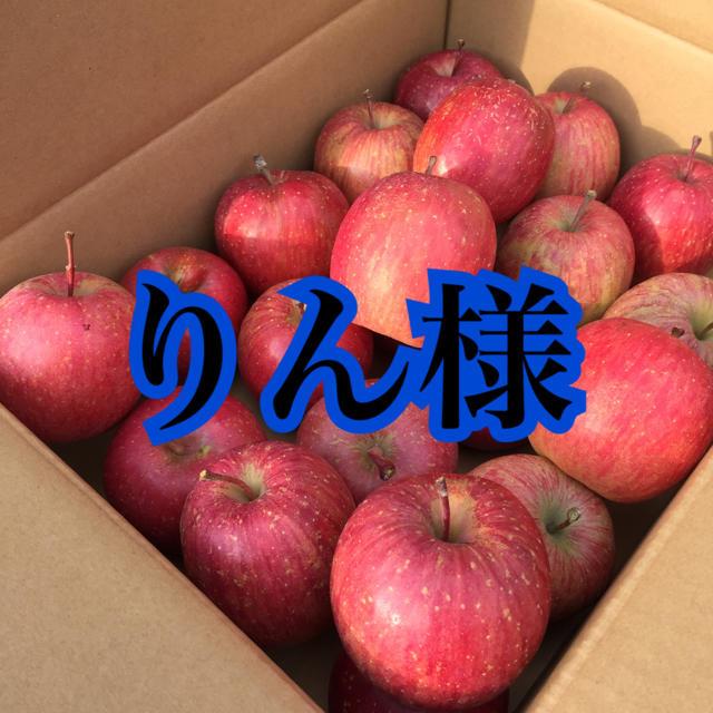 蜜入りりんご サンふじ 専用 食品/飲料/酒の食品(フルーツ)の商品写真