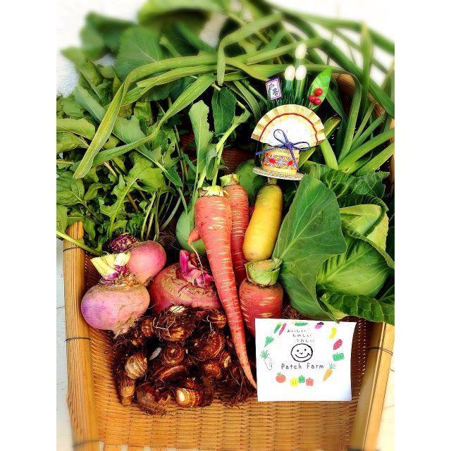 中野様専用野菜バスケット 食品/飲料/酒の食品(野菜)の商品写真