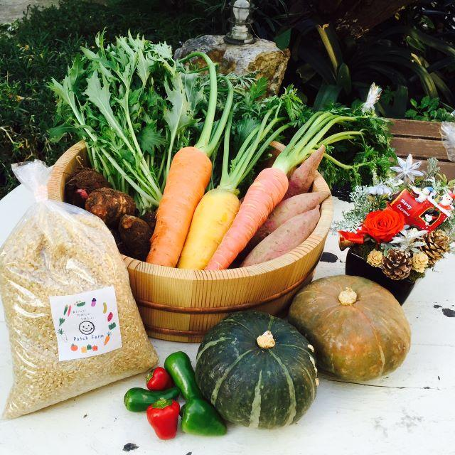 渥美半島から直送!旬彩野菜バスケット【M】 食品/飲料/酒の食品(野菜)の商品写真