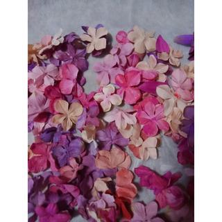 造花50枚紫ピンクベース(その他)