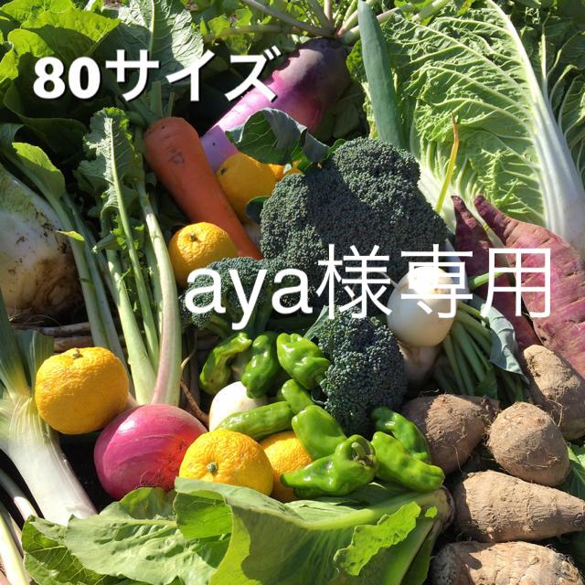 野菜セット  80  aya様専用 食品/飲料/酒の食品(野菜)の商品写真