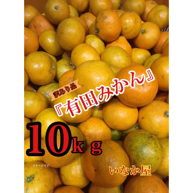 有田みかん 訳あり品 10kg 数量限定 食品/飲料/酒の食品(フルーツ)の商品写真
