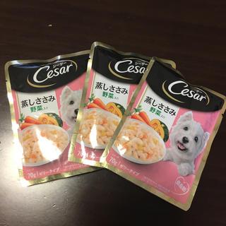 シーザー(CASAR)のシーザー 仔犬用 蒸しささみ野菜入り 70g 3個セット(ペットフード)