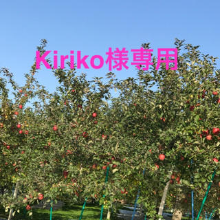 Kiriko様専用 黒にんにく3袋(野菜)
