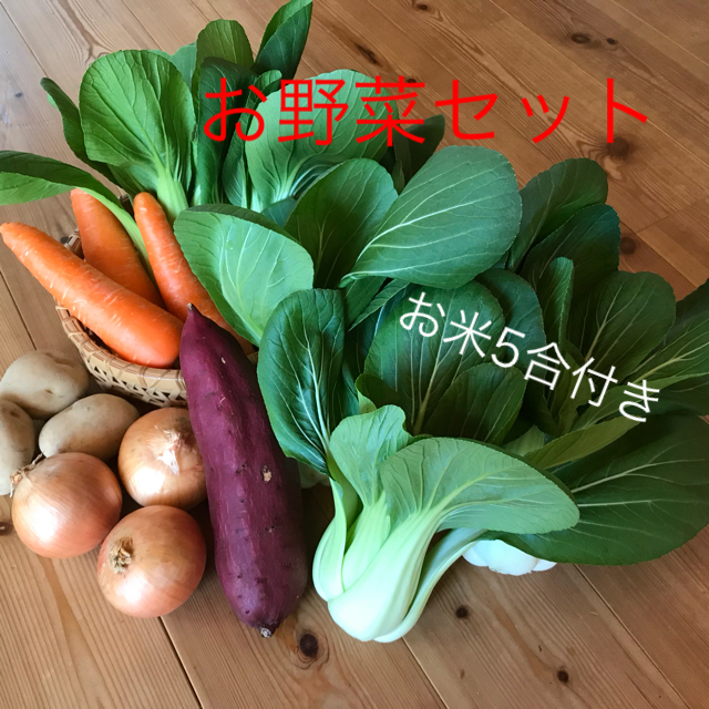 チンゲン菜&野菜セット 食品/飲料/酒の食品(野菜)の商品写真