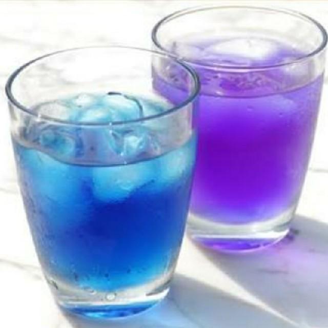 バタフライピー茶③ 食品/飲料/酒の飲料(茶)の商品写真