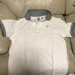 ASHWORTH ポロシャツ
