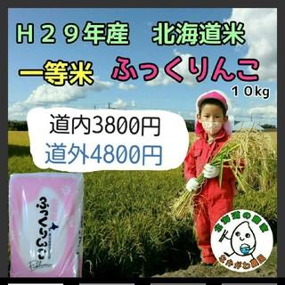 29年産  農家直売 北海道米 ふっくりんこ  20kg(米/穀物)