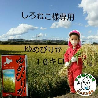 しろねこ様専用 農家直売 北海道米 ゆめぴりか 10kg 29年産(米/穀物)