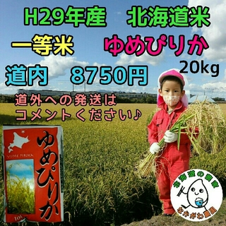 農家直売 北海道米 ゆめぴりか 20kg 29年産(米/穀物)