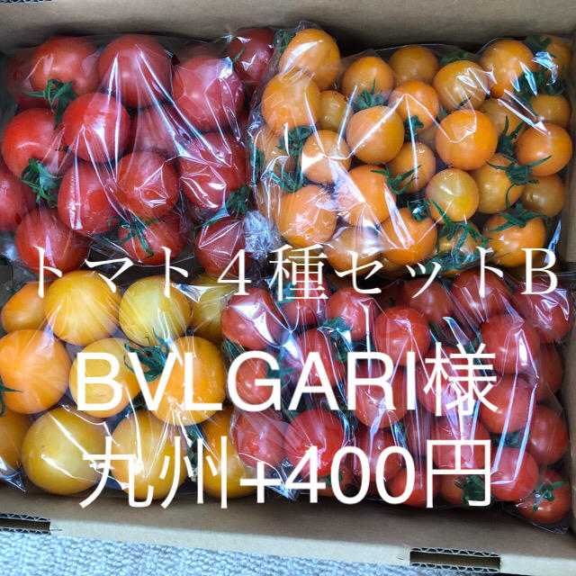 BVLGARI様専用出品 4種B 食品/飲料/酒の食品(野菜)の商品写真