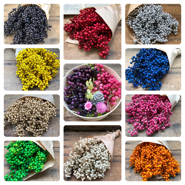 選べる10色♡ペッパーベリー♡量り売り♡ドライフラワー♡素材 ハンドメイドのフラワー/ガーデン(ドライフラワー)の商品写真