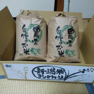 新潟米 コシヒカリ H30年新米 (米/穀物)