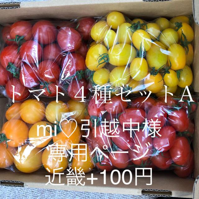 mi♡引越中様専用 4種A 食品/飲料/酒の食品(野菜)の商品写真