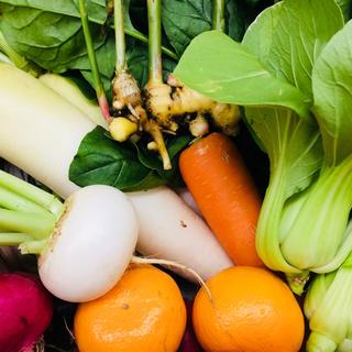 無農薬 朝採り野菜 80サイズ 鹿児島県産 即日発送可(野菜)