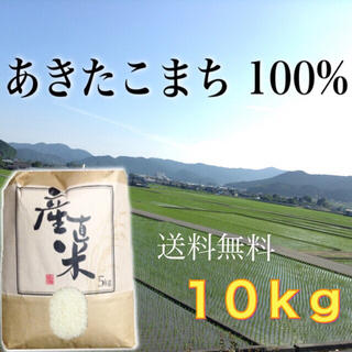 【丸源様専用】愛媛県産あきたこまち100%   10kg   農家直送(米/穀物)