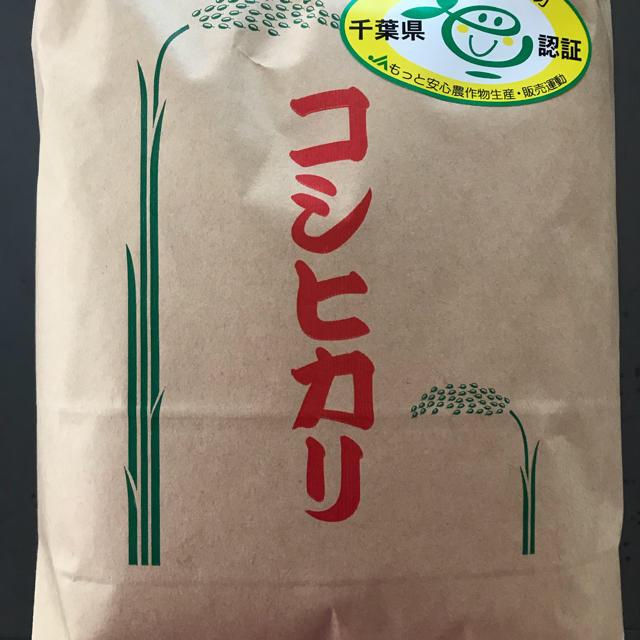 お米3kg&チンゲン菜お野菜セット 食品/飲料/酒の食品(野菜)の商品写真