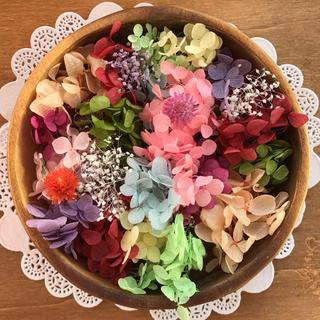 紫陽花よくばりセット♡ハーバリウムなどに(プリザーブドフラワー)