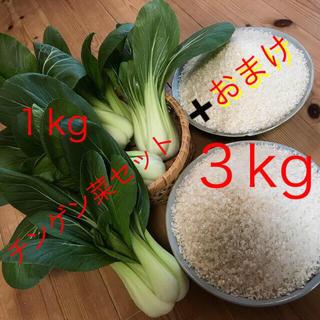 チンゲン菜1kg以上&新米3kg+おまけ(野菜)