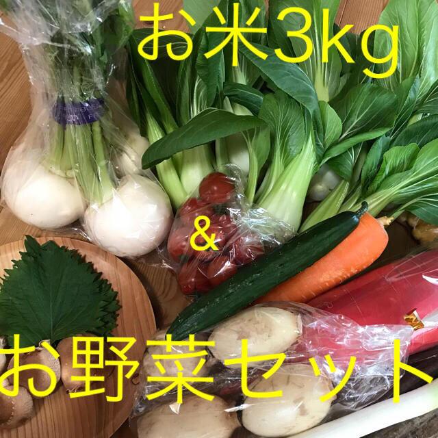 お米3kg&お野菜セット 食品/飲料/酒の食品(野菜)の商品写真