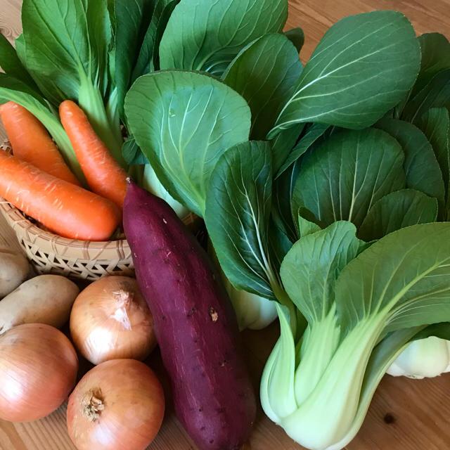 新米5kg&チンゲン菜お野菜セット 食品/飲料/酒の食品(野菜)の商品写真