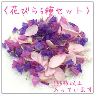 〈花びら5種セット〉スターチス・アジサイ・センニチコウ(ドライフラワー)