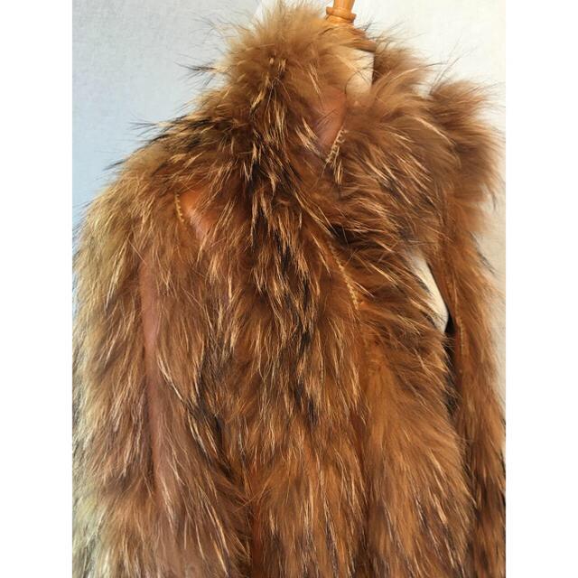 ラクーン×ラムレザージャケット ブラウン  レディースのジャケット/アウター(毛皮/ファーコート)の商品写真