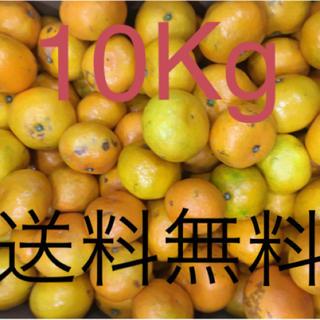 和歌山県 傷あり訳ありみかん10Kg(フルーツ)