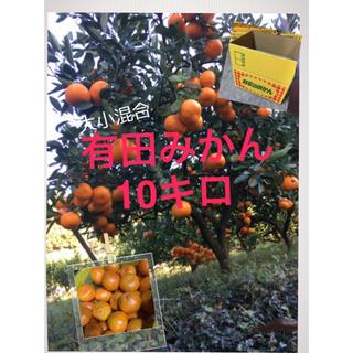 くんちゃん 様 専用  完熟 早生有田みかん 大小混合10キロ(フルーツ)