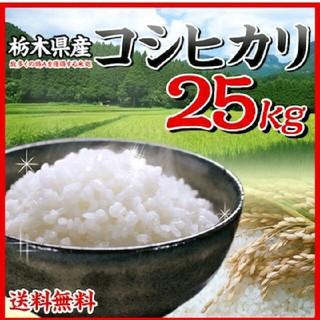 お米25kg 新米出ました 白米 精米しまして発送!!精米仕立て(米/穀物)