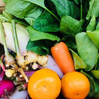 無農薬 朝採り野菜 5キロ箱いっぱい 80サイズ 鹿児島県産 即日発送可(野菜)