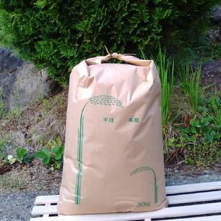 宮崎県産 ヒノヒカリ 米30㎏(米/穀物)