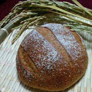 15日限定 焼きたて米糠カンパーニュ  4個セット(パン)