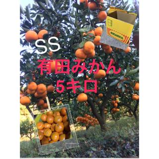 完熟  早生有田みかん SS5キロ(フルーツ)