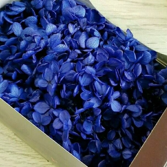 ハーバリウム ★ プリザーブドフラワー ★ 紫陽花 ★ ネイビーブルー ハンドメイドのフラワー/ガーデン(プリザーブドフラワー)の商品写真