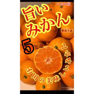 有田みかん 訳あり品5kg(フルーツ)