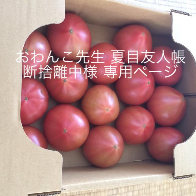 おわんこ先生 夏目友人帳 断捨離中様 食品/飲料/酒の食品(野菜)の商品写真