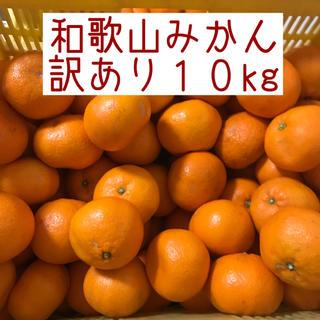 和歌山みかん 訳あり 10kg