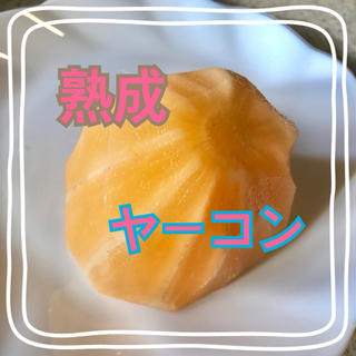 サラダヤーコン1.2キロ 一点限り(野菜)