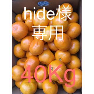 和歌山県傷あり訳ありみかん40Kg(フルーツ)