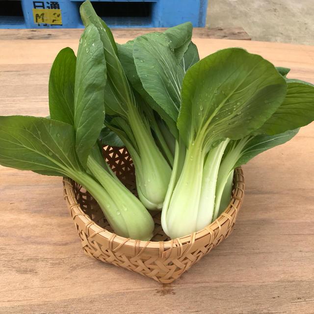ハートキュウリ❤️お米3kg&キュウリ&チンゲン菜 食品/飲料/酒の食品(野菜)の商品写真