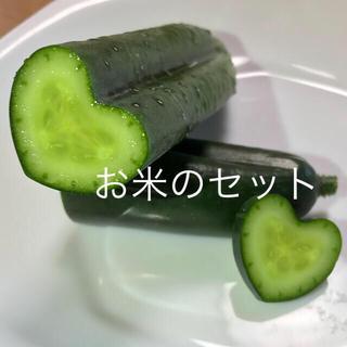 ハートキュウリ❤️お米3kg&キュウリ&チンゲン菜(野菜)