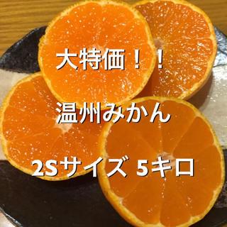 大特価‼︎ 温州みかん 2Sサイズ 5キロ(フルーツ)
