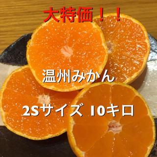 大特価‼︎ 温州みかん 2Sサイズ 10キロ(フルーツ)