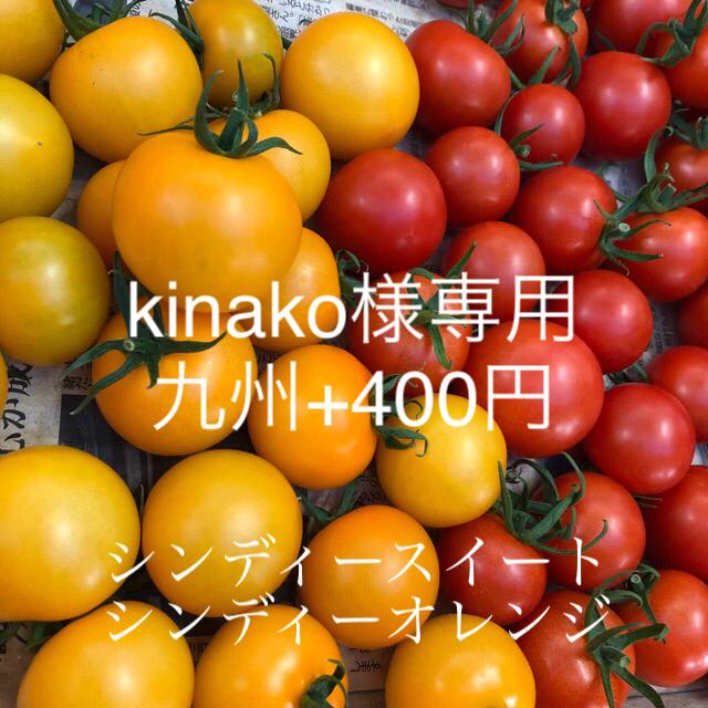 注文ページ    現在停止中 食品/飲料/酒の食品(野菜)の商品写真