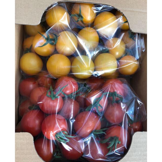 中玉とまと2キロ 食品/飲料/酒の食品(野菜)の商品写真